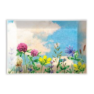MDW Glass Rectangle Soap Dish – Cloud Nine