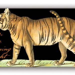 MDW Matchbox – Tiger