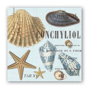 MDW Cocktail Napkins – Seashells