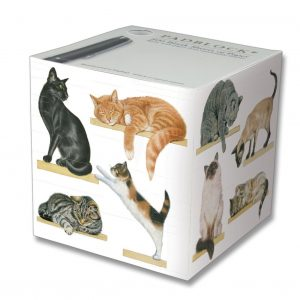 Padblock Cats On Shelves