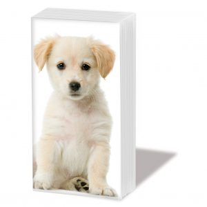 PPD Sniff Tissues – Puppy