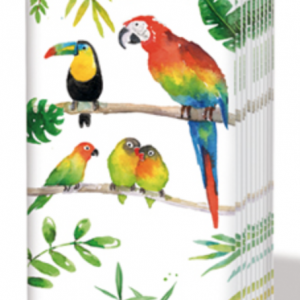 PPD Sniff Tissues – Tropical Birds